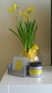 Daffodils :-)